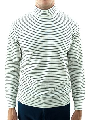 Picture of Wool Turtleneck sweater with white background and blue stripes