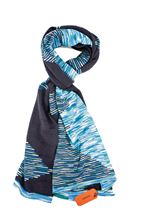 Picture of Scarf blue background