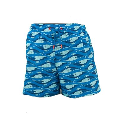 Picture of Sundek swimming boxers