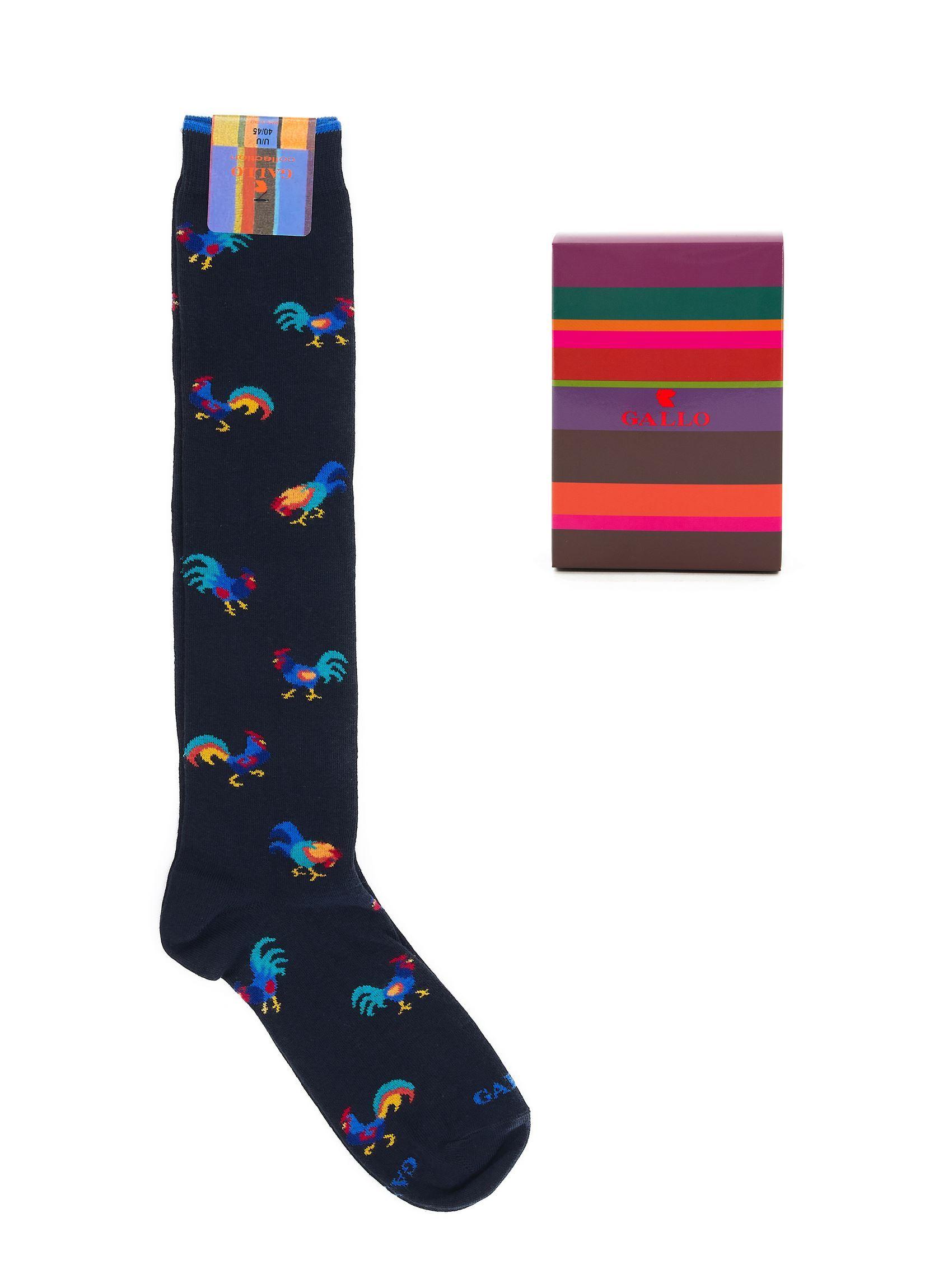 Immagine di calza lunga fantasia blu