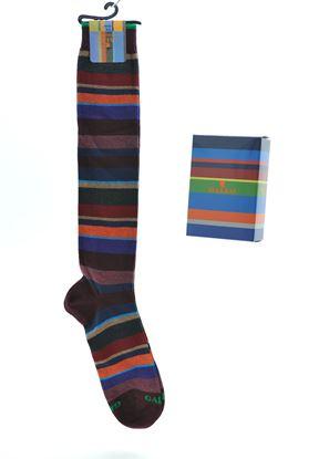 Immagine di Calza lunga cotone caldo